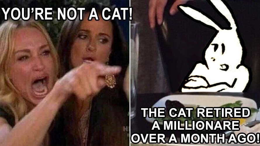 Woman vs Cat Meme